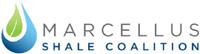 logo_marcellus